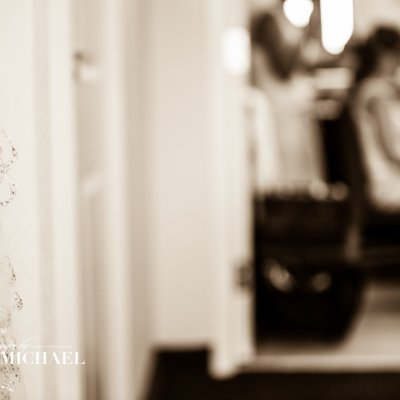 Wedding Photography Wedding Veil