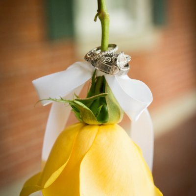Wedding Rings Photos on Yellow Rose