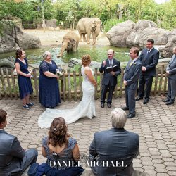 Cincinnati Zoo Wedding Photographer