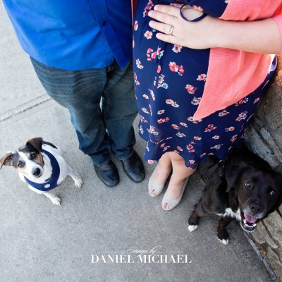 Maternity Photos with Dogs, Dog Maternity, Cincinnati Photographers, Jessica Rist