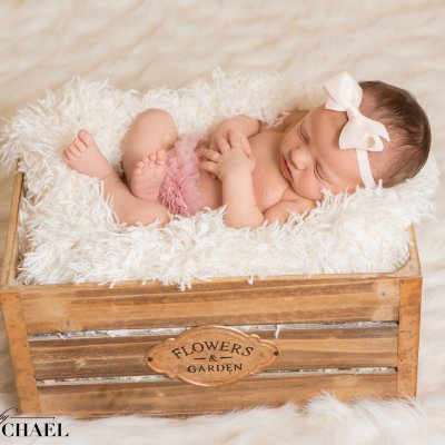 Newborn Portrait Photographer