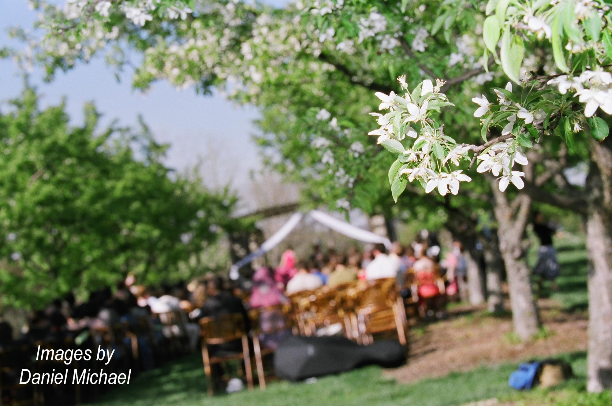 Cox Arboretum Ceremony Photographer Dayton Miamisberg