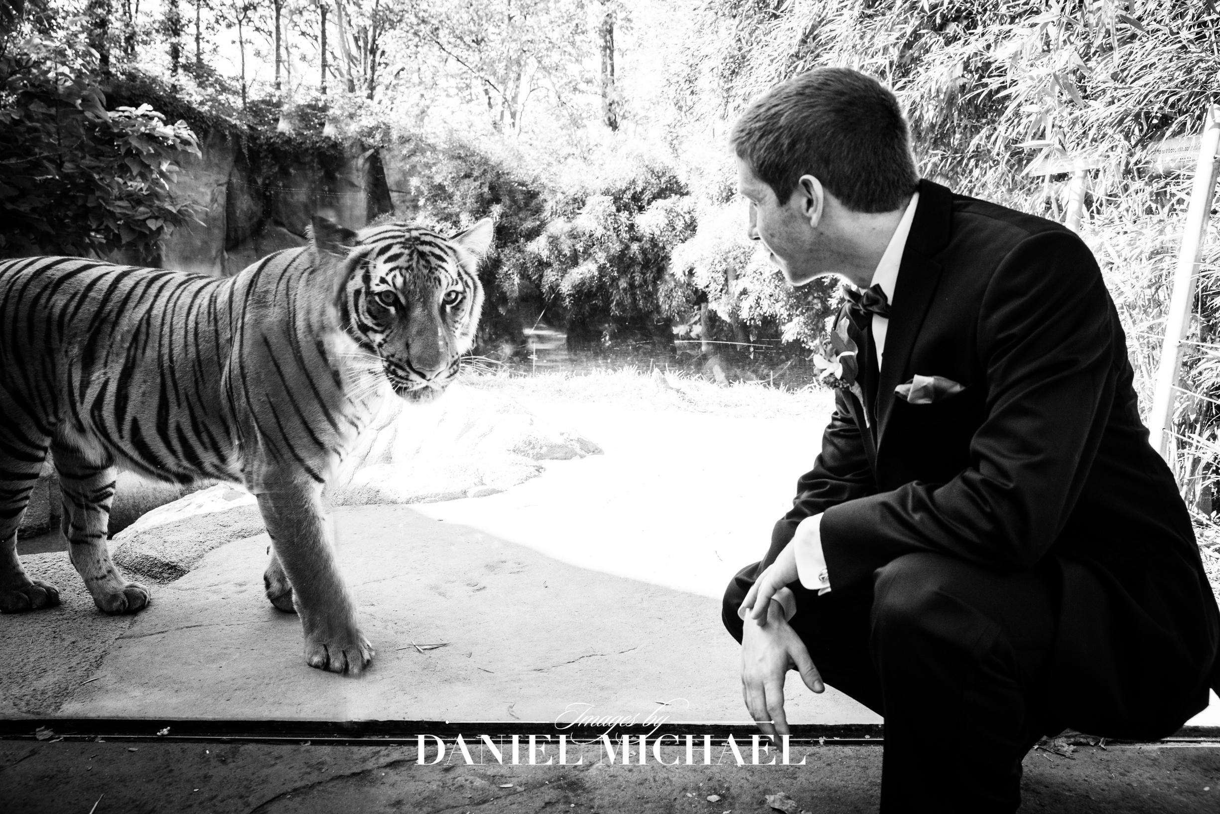 Cincinnati Zoo Wedding Photography Venue