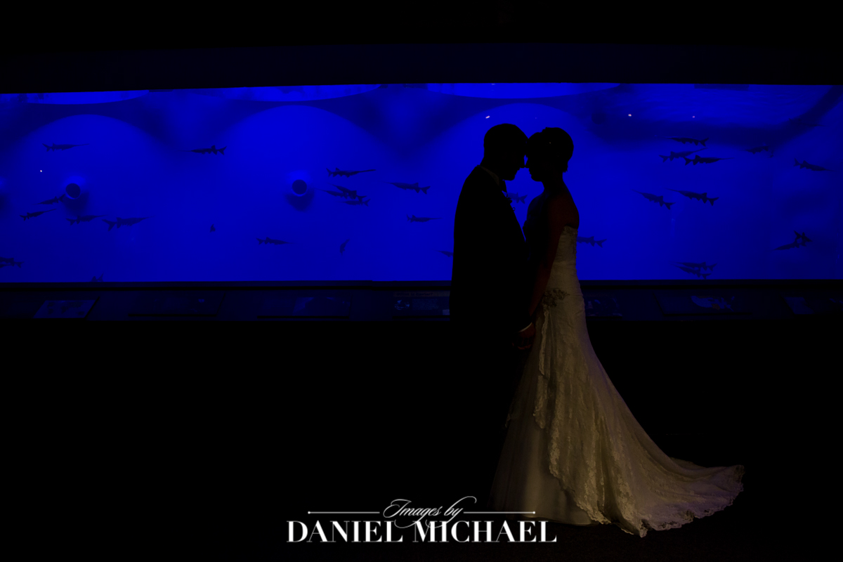 newport aquarium, cincinnati wedding venue