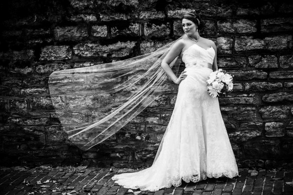 Bride and Veil Cincinnati Photography