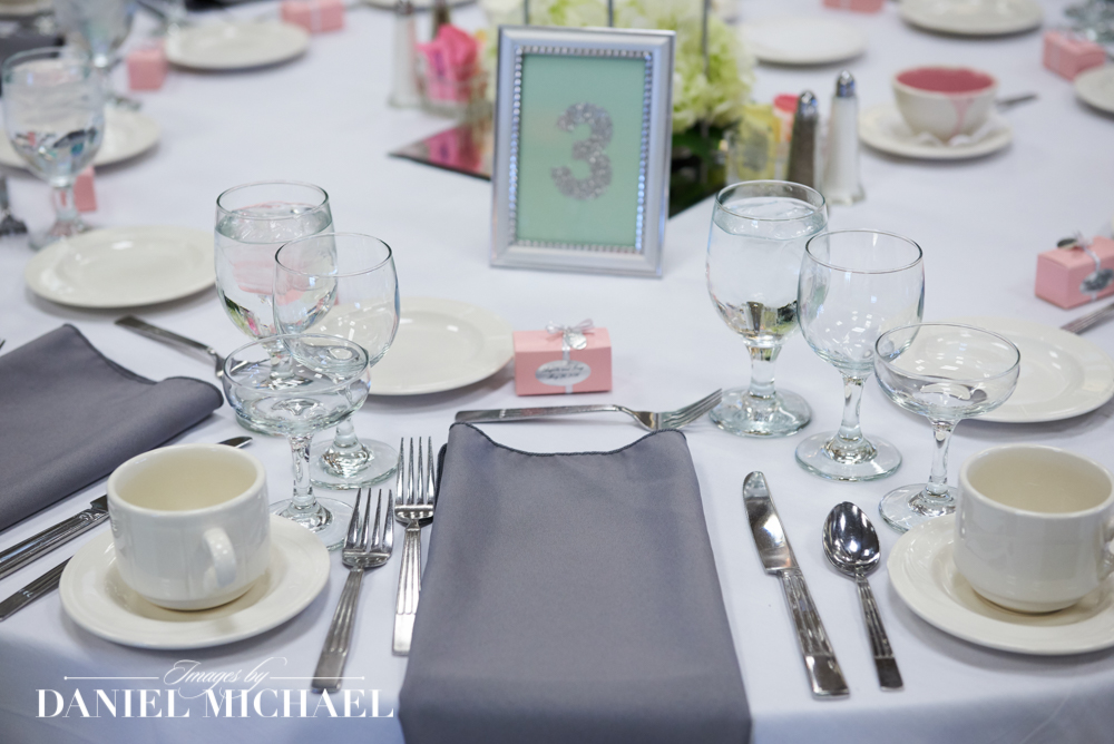 Oasis Wedding Reception Photographers