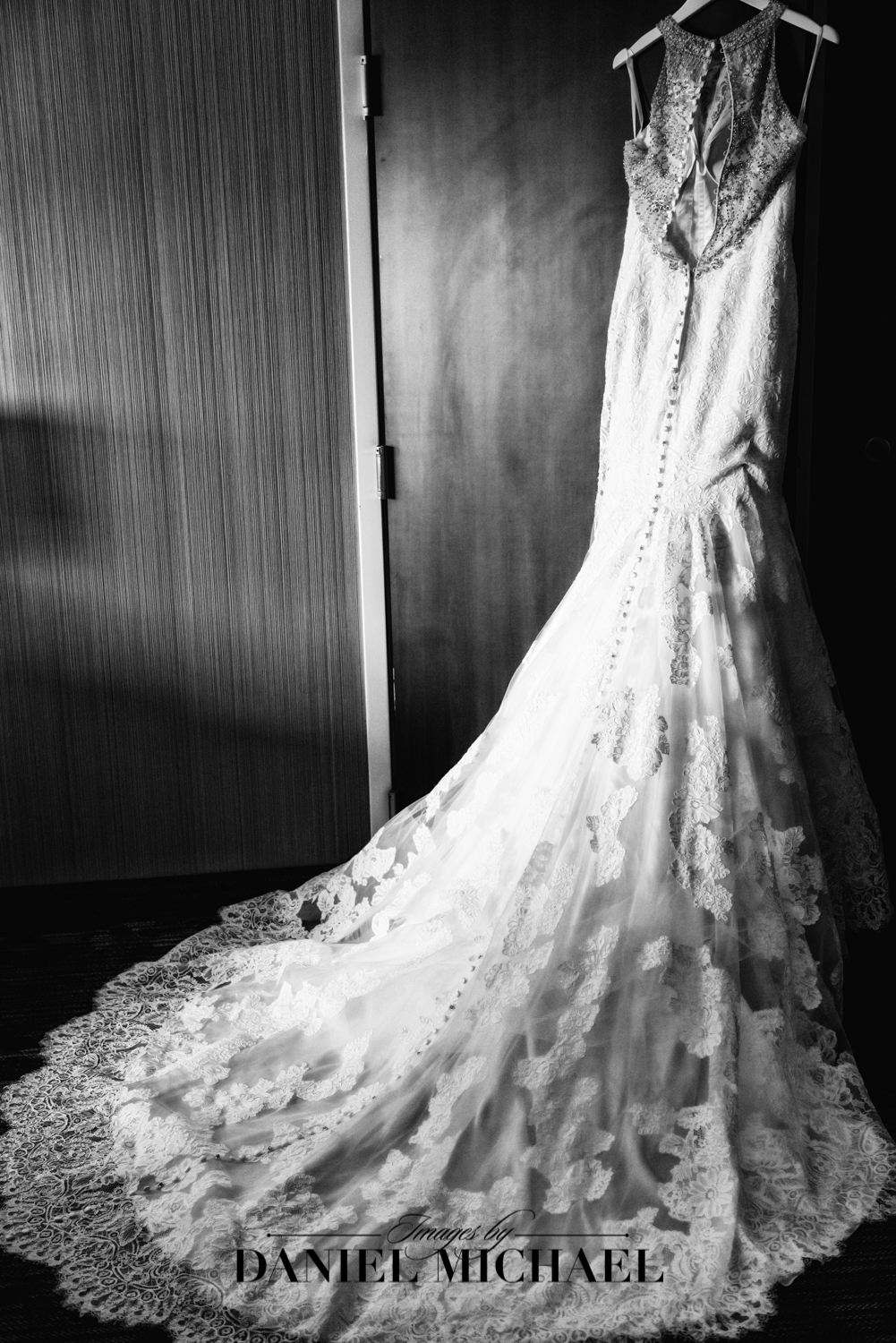 Lace Bridal Wedding Dress Photo
