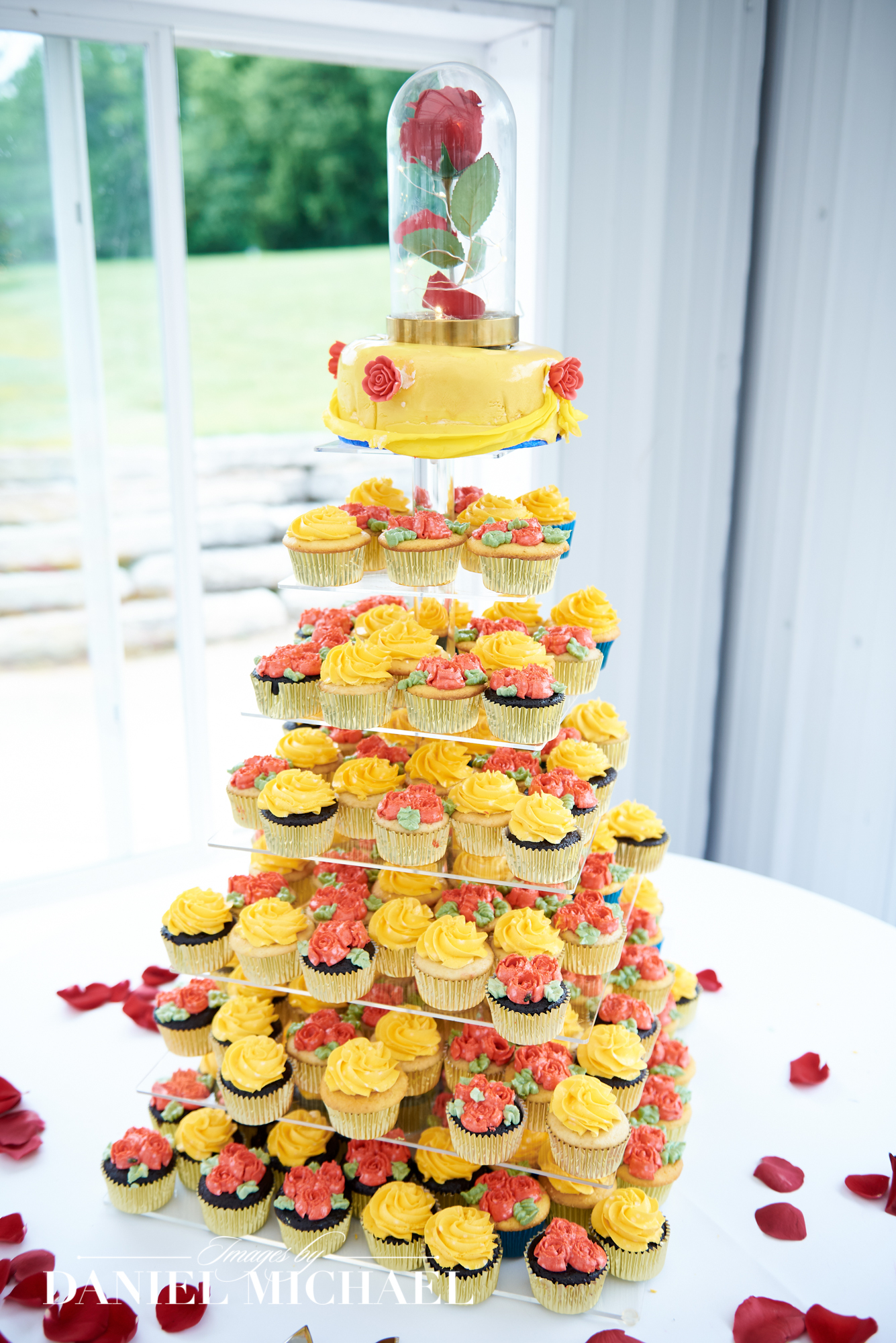 Wedding Cupcake Photos