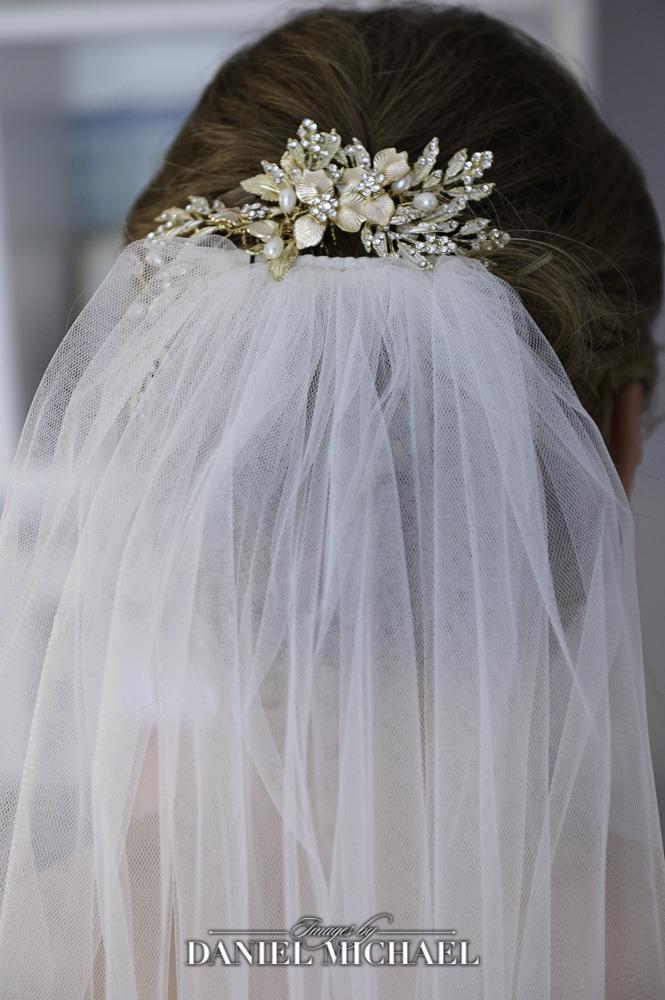 Veil and Headpiece Wedding Photo
