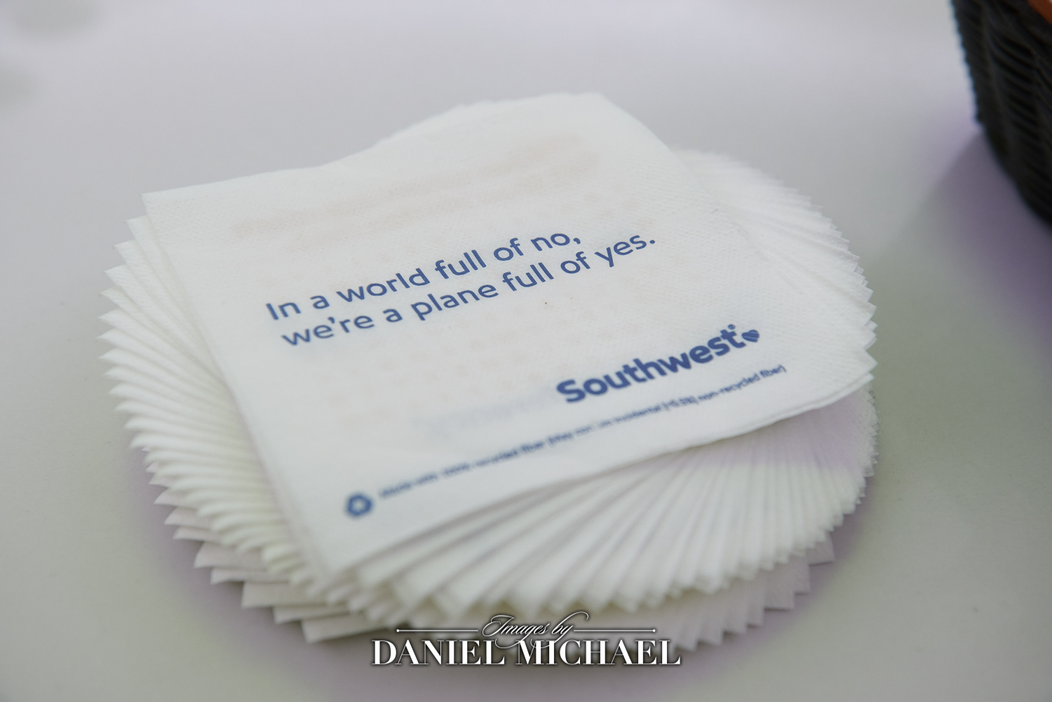 Airplane theme napkins