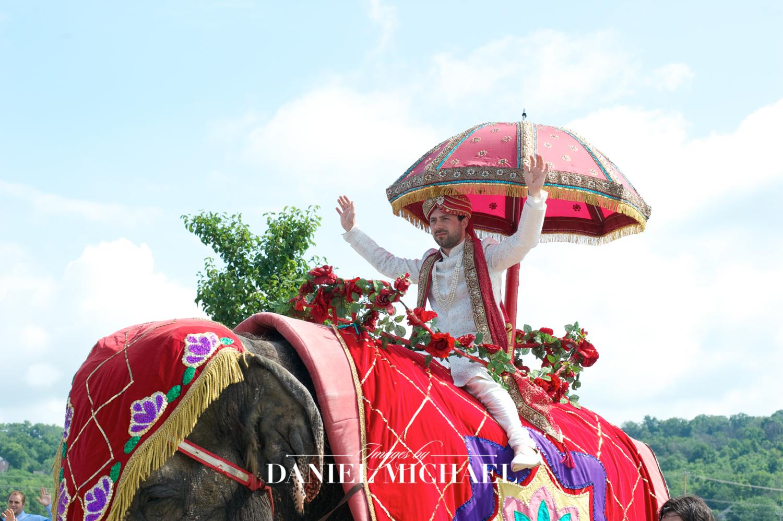 Indian Wedding Groom on Elephant