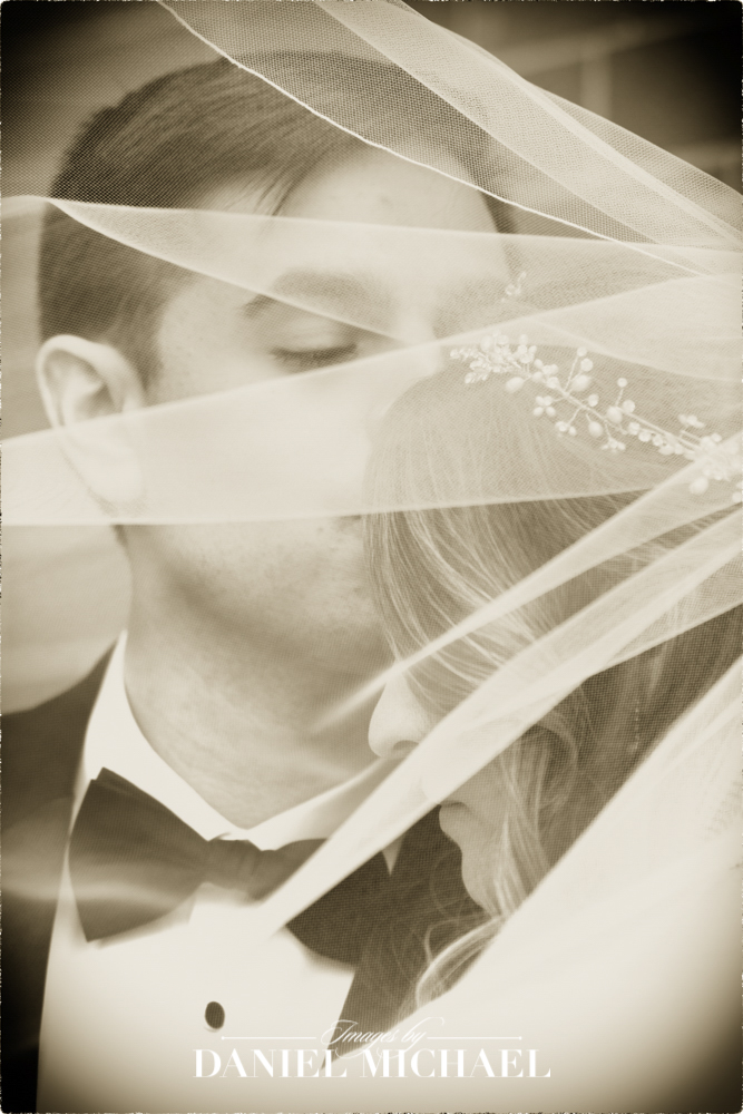 Wedding Photo with Veil