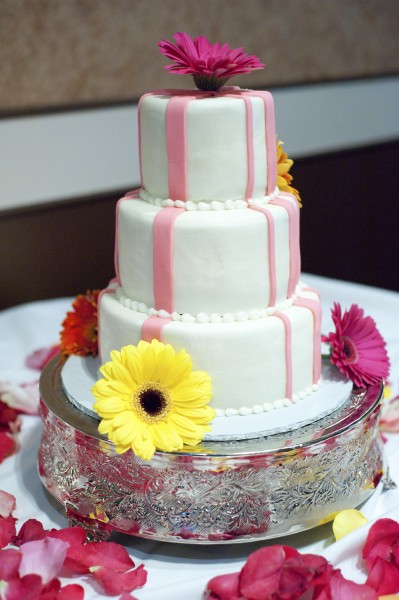 Lisa\'s Cakes Wedding Photographers