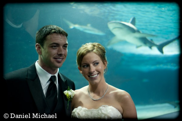 Newport Aquarium Wedding Reception Photos