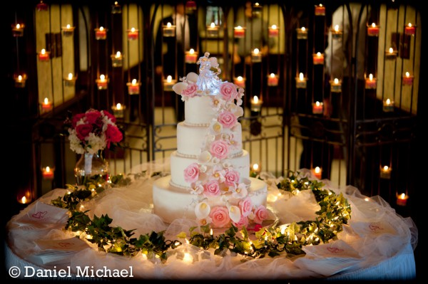 Patricia\'s Wedding Cake PHotos